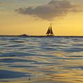 Kaimana Golden Sunset by Erika Swartzkopf