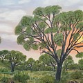 Kalahari by NOELINE Du Toit