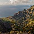Kalalau Valley 3 by Brian Harig