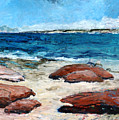 Kalbarri  Beach by Joan De Bot