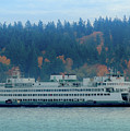 Kaleetan - Washington State Ferry by E Faithe Lester