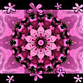 Kaleidoscope 1 With Black Flower Framing by Carol Groenen