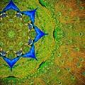 Kaleidoscope by Amanda Smith
