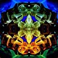 Kaleidoscope by Barbara Evans