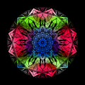 Kaleidoscope - Warm And Cool Colors by Deleas Kilgore