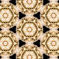 Kaleidoscopes- 11 by David Lange