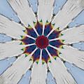Kaleidoscopic 5 by Sean Griffin