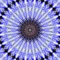 Kaliedoscope Purples by Suzanne Handel