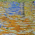 Kaloya Pond Autumn by Darrel Giesbrecht