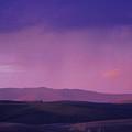 Kamiak Butte Spring Rain At Dusk by Sarah Hamilton