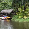 Kamokila Hawaiian Village - Kauai by Yefim Bam