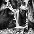 Kanarraville Falls Bw by Erika Fawcett