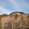 Kancamagus Highway - White Mountains New Hampshire - Rocky Cliff by Erin Paul Donovan
