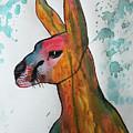 Kangaroo Water by Novy Rich