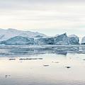 Kangia Icefjord by Janet Burdon