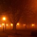 Kansas City Grand Avenue Park In Fog by David Dunham