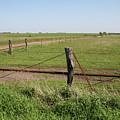 Kansas by Dylan Punke