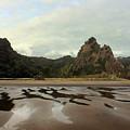 Karekare Beach by Gee Lyon