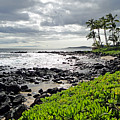 Kauai Afternoon by Robert Meyers-Lussier