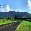 Kauai Countryside by Laura Ragland