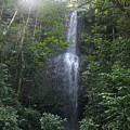 Kauai Waterfall by Diane Merkle