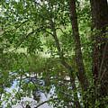Kaulanen Lake by Jouko Lehto