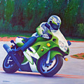 Kawasaki Zx7 - In The Groove  by Brian  Commerford