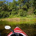 Kayak On A Forested Lake by Steve Gadomski