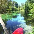 Kayak On Weeki Wachee Springs by Deborah Kennedy