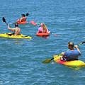 Kayaking Friends by Ann Horn
