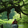 Kayaking In Dismal Swamp by Charles  Ridgway