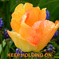 Keep Holding On by Gallery Of Hope