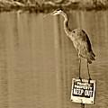 Keep Out by Darin Bokeno