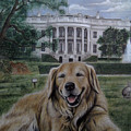 Kelli On The White House Lawn by Jonathan Anderson