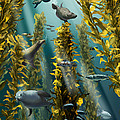 Kelp Forest With Seals by Jim Dowdalls