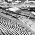 Kelso Dunes Desert Portrait Black And White by Kyle Hanson