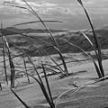 Kelso Dunes by Eric Rosenwald