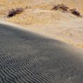 Kelso Dunes Portrait by Kyle Hanson