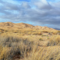 Kelso Dunes Wilderness by Kyle Hanson
