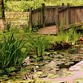 Kenilworth Footbridge by Susan Isakson