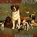 Kennel Club by Mindy Zimmerman