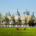 Revised Kentucky Horse Barn Hotel 2 by Randall Branham