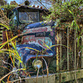 Kenworth In The Weeds by Jerry Gammon