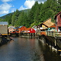 Ketchikan Creek by Michael Peychich
