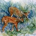 Key Deer by Ruth Mabee
