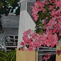 Key West Bougainvillea by John Schuller