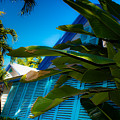 Key West House by Patrick  Flynn