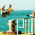 Key West Landing by Susan Vineyard