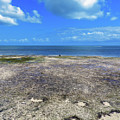 Key West Low Tide Cloudscape by Bob Slitzan