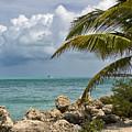 Key West Paradise 4 by Bob Slitzan